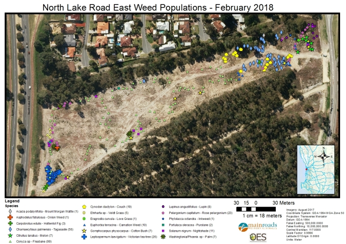 North Lake Road East Weed Populations - Feb 2018