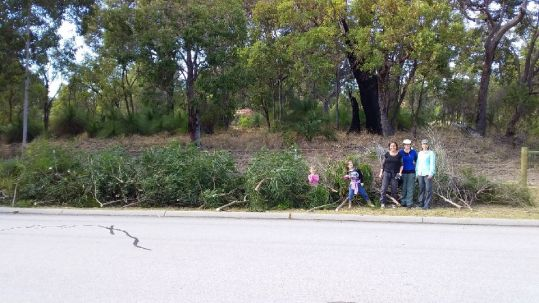 Members of the Wildlife Corridor Group in front of removed weeds